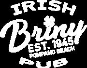 briny-circular-logo-350px